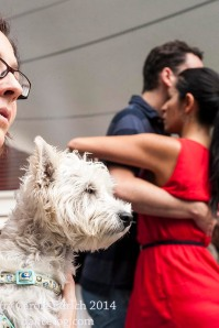 Dog, owner and dancers at Spitalfields Tango on September 14th, (c) Carole Edrich 2014