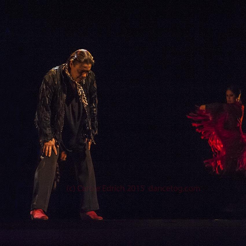 Antonio Canales in Gala Flamenco at Sadler's Wells Flamenco Festival, (c) Carole Edrich 2015